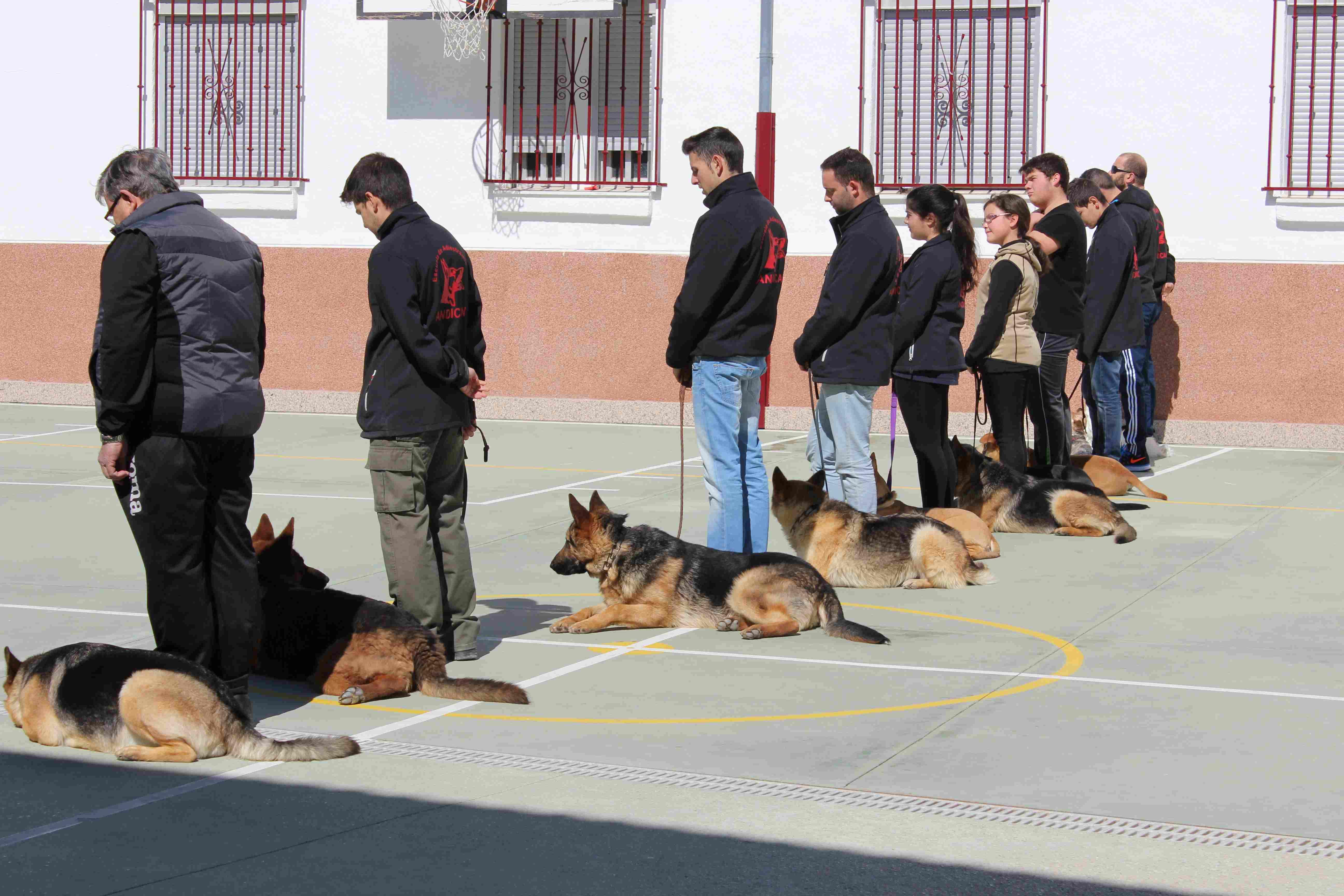 Exhibición caninaIMG_6108