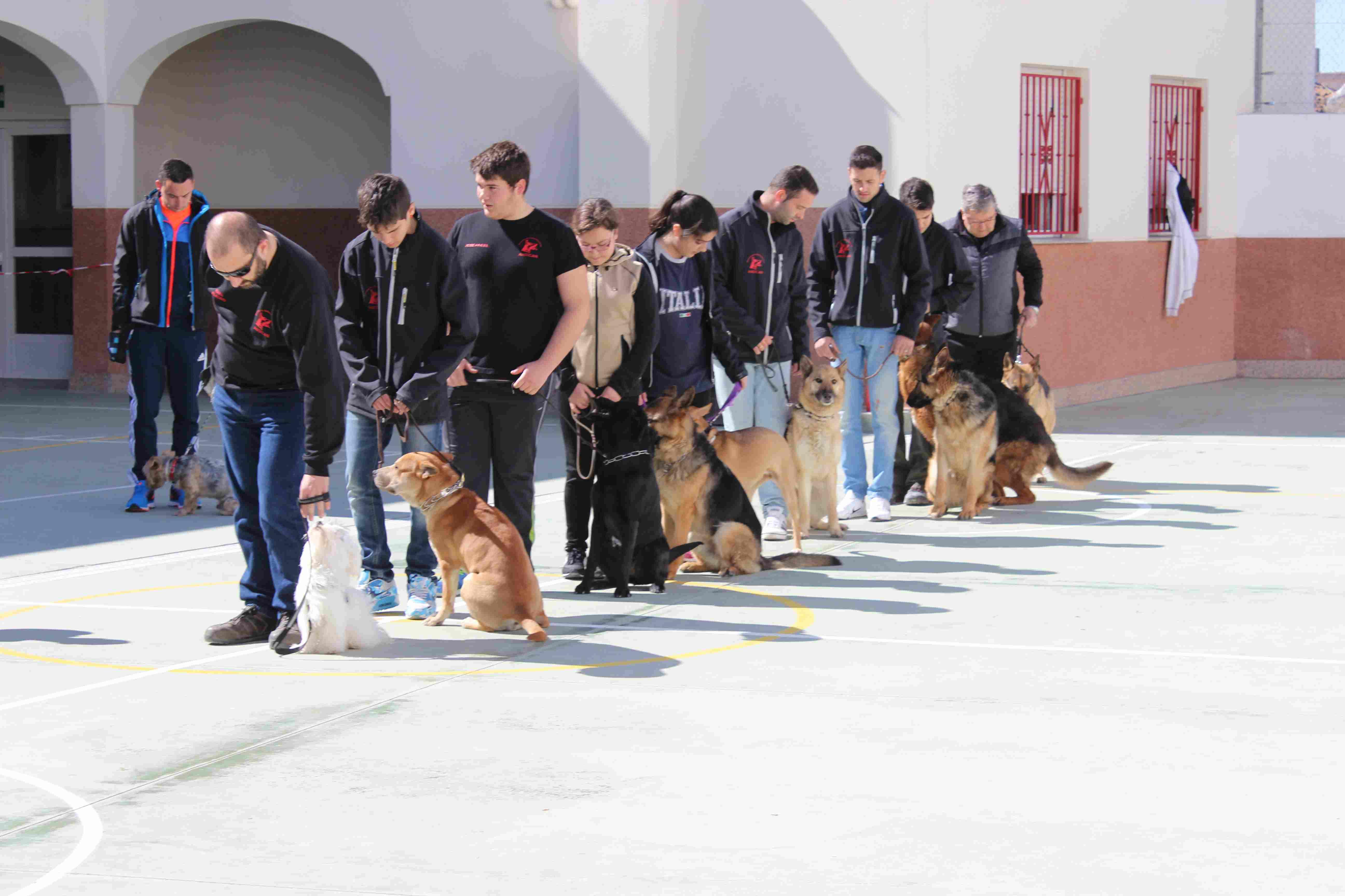 Exhibición caninaIMG_6130